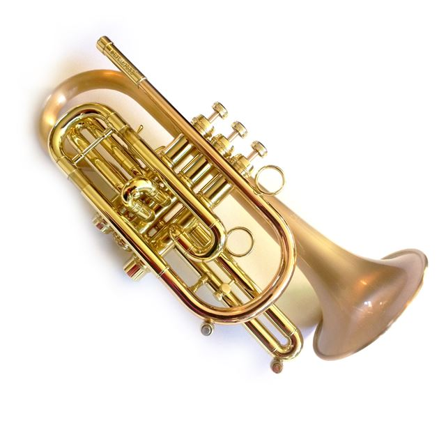 Carol Brass CCR-3000-GSS-Bb-SLB Intermediate Bb Cornet